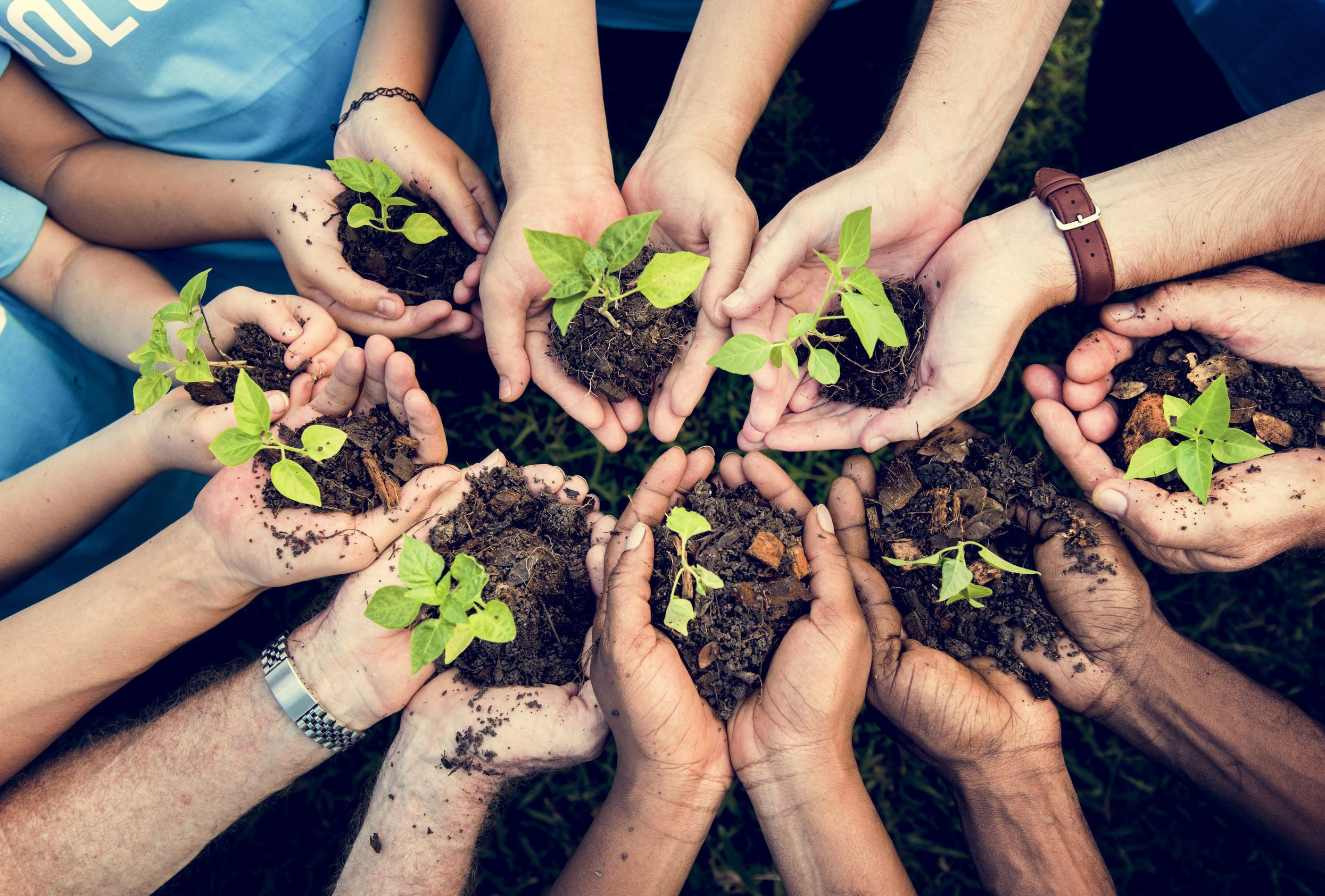 Community Support and Sustainability