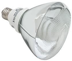 Feit EcoBulb® CFL 18 Watt (75W)  PAR40 Warm White (2700K)