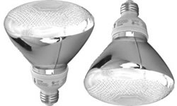 TCP CFL 23 Watt (90W) PAR38 Two Pack Warm White (2700K)